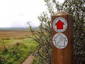 The Icknield Way Path near Hitchin, Hertfordshire.  Picture: Chris Wood, 2006.